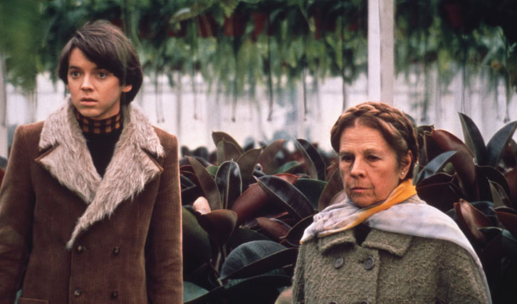 Harold And Maude Trailer Deutsch