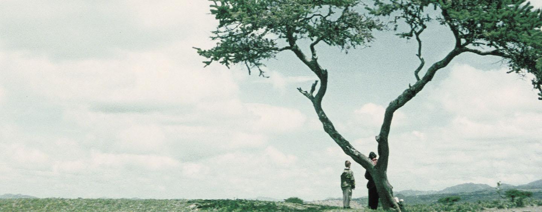 """Ein Frühwerk von Carlos Reygadas: """"Japon"""""""