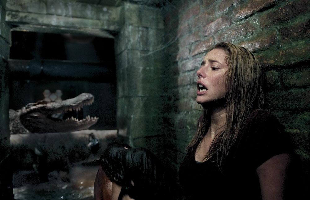 """Mit Filmen wie """"Crawl"""" wurde der Tierhorror mit Öko-Anstrich neu belebt (© Paramount)"""