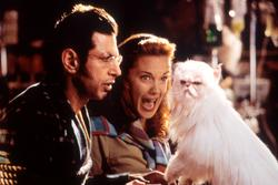 Jeff Goldblum, Elizabeth Perkins
